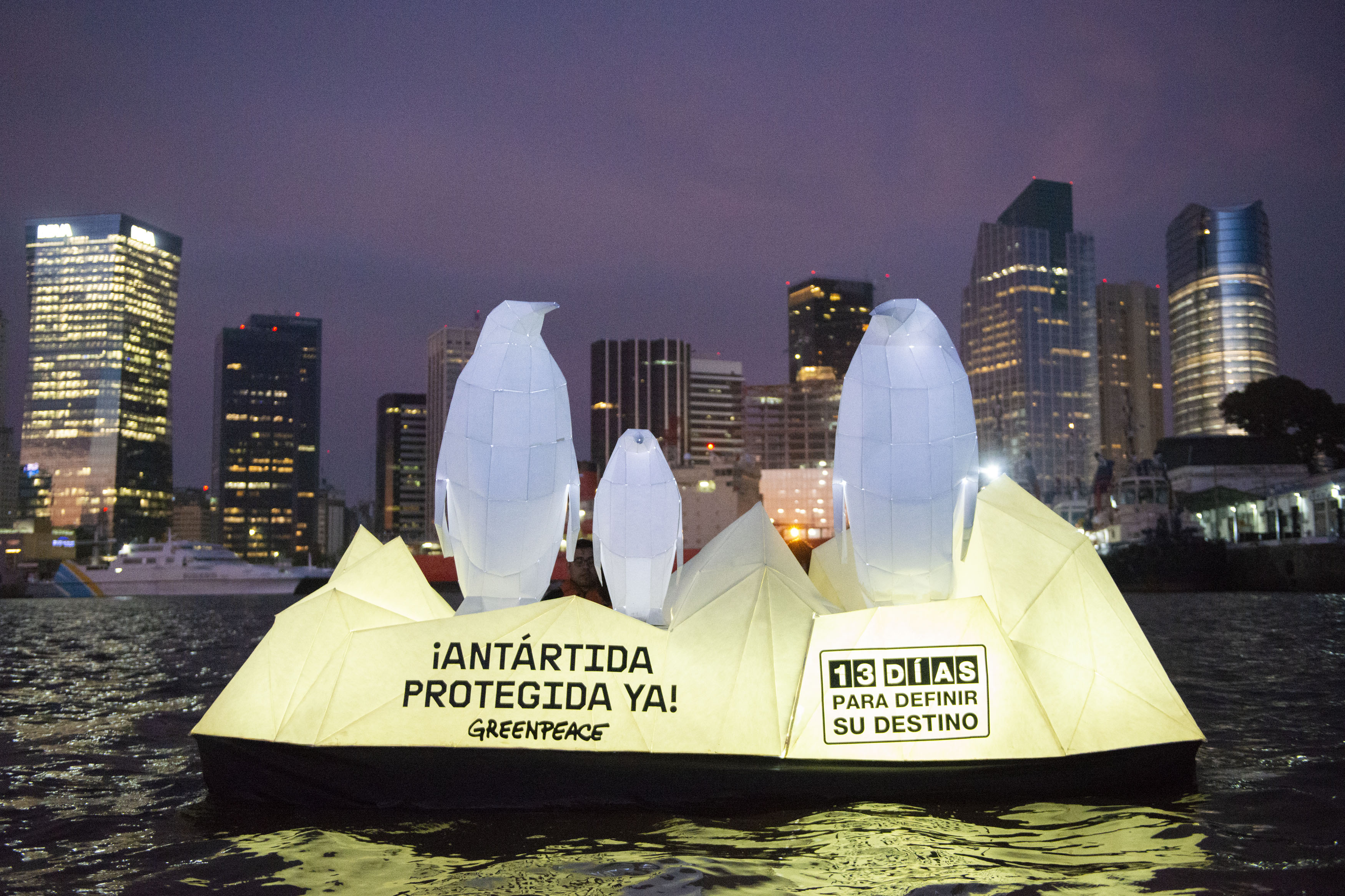 Pingüinos en el Río de la Plata