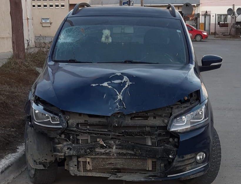auto matador